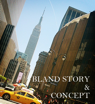 BLAND STORY & CONCEPT